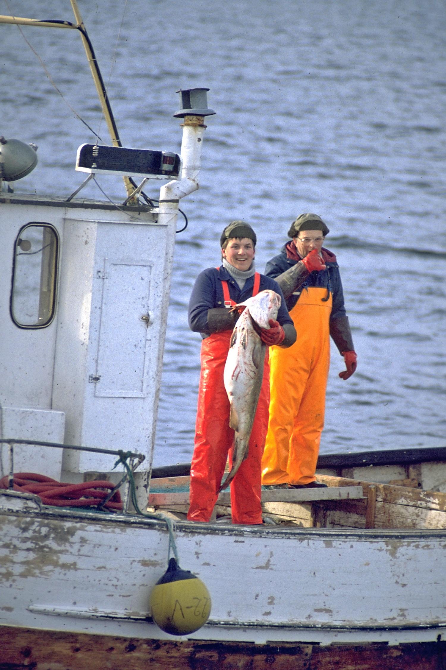 17-072=N-0608-N-Nordland, Lofotenfischer
