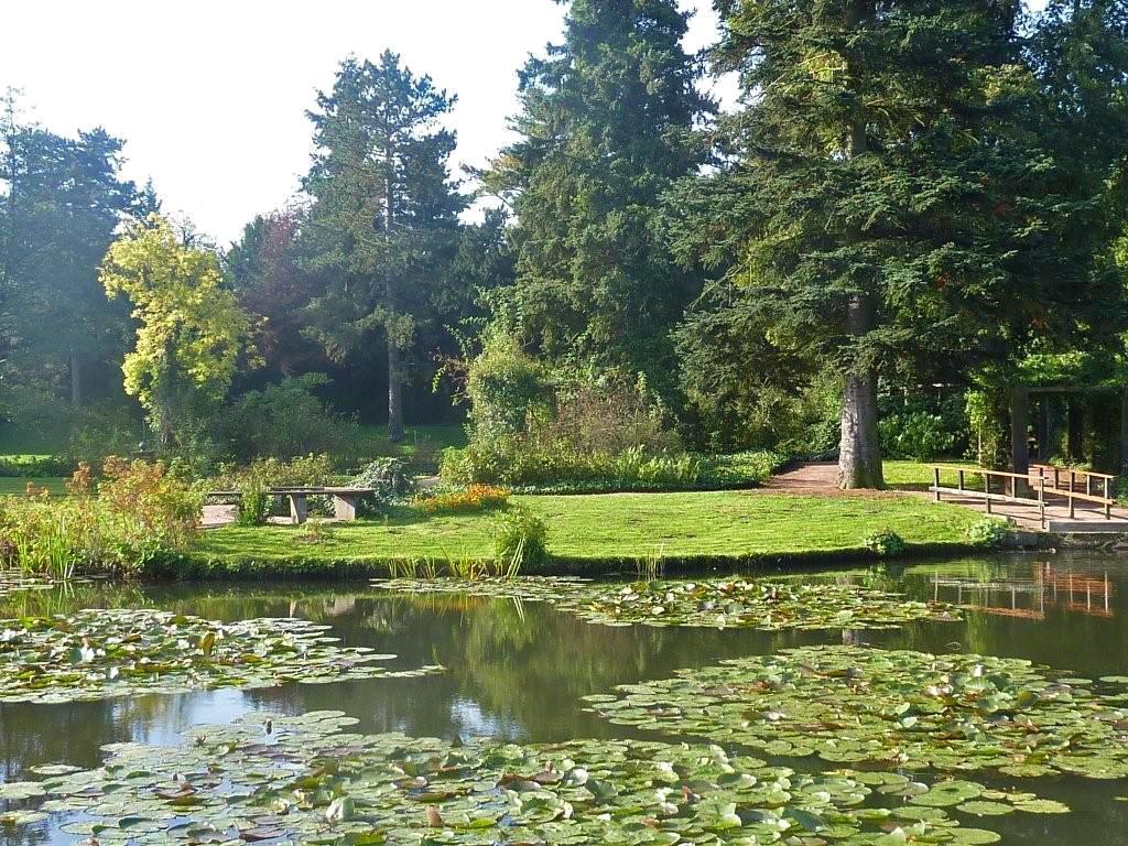 Wörlitzer Anlage, Park mit See